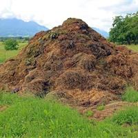 畜禽粪污资源化利用信息平台